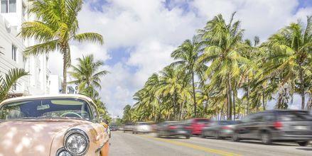 Gade i Miami