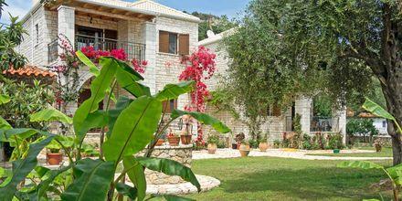Haven på Mikros Paradisos i Sivota, Grækenland