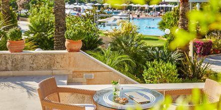 Hotel Minoa Palace Resort & Spa i Platanias på Kreta, Grækenland.