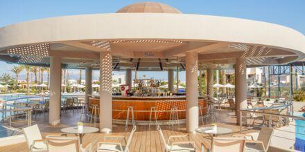 Poolbar på hotel Minoa Palace Resort & Spa i Platanias på Kreta, Grækenland.