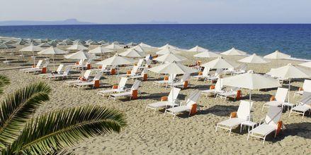 Stranden ved Minos Mare Royal; kreta