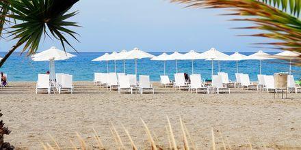 Stranden ved Minos Mare Royal, Kreta.