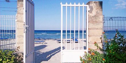 Stranden ved Hotel Mirada i Alcudia, Mallorca