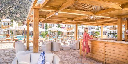 Bar på Mitsis Blue Domes Resort & Spa på Kos i Grækenland.