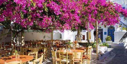 Mykonos, Grækenland.