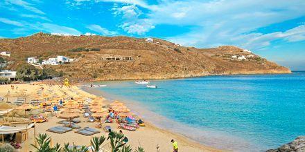 Super Paradise Beach på Mykonos, Grækenland.