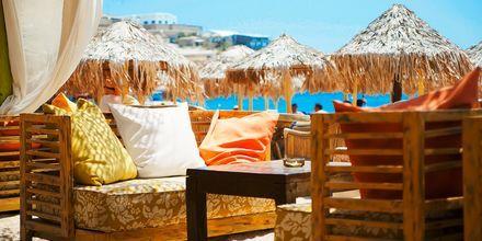 Elia Beach på Mykonos, Grækenland.