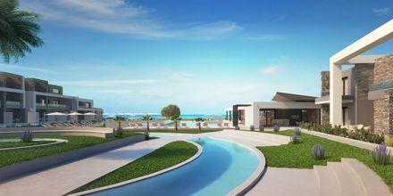 Skitse billede af poolområdet på Hotel Myrion Beach Resort i Gerani på Kreta, Grækenland.