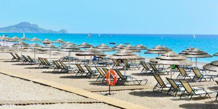 Stranden ved Hotel Mythos Beach Resort Afandou på Rhodos
