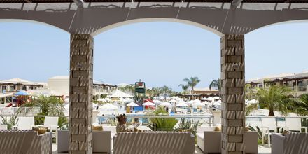 Lobbybaren på Hotel Mythos Beach Resort i Afandou på Rhodos