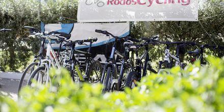 Lej cykel på Hotel Mythos Beach Resort i Afandou på Rhodos