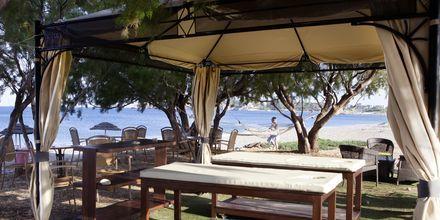 Massage ved stranden på Hotel Mythos Beach Resort i Afandou på Rhodos