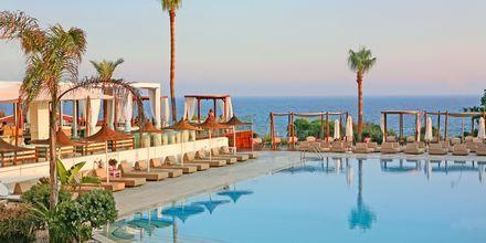 Poolområde på Napa Mermaid Hotel & Suites i Ayia Napa, Cypern.