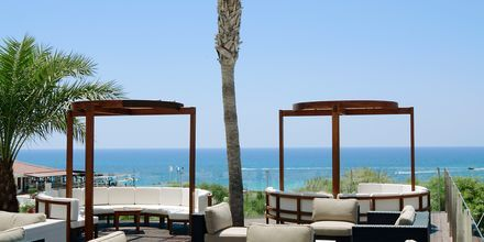 Andama Bar på Napa Mermaid Hotel & Suites i Ayia Napa, Cypern.