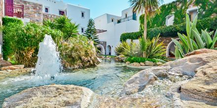 Hotel Naxos Resort i Naxos by, Grækenland.