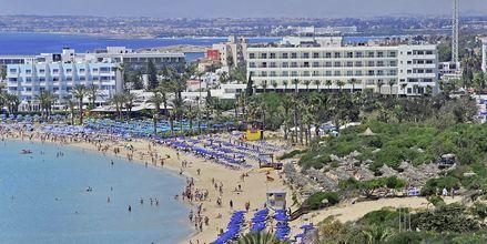 Hotel Nelia Beach i Ayia Napa, Cypern