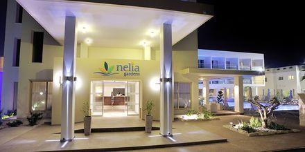 Hotel Nelia Garden, Ayia Napa, Cypern.
