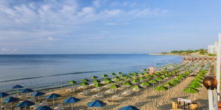Stranden i Nessebar, Bulgarien.