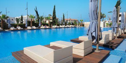 Poolområdet på hotel Nestor i Ayia Napa, Cypern