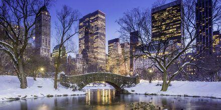 Central Park i New York, USA.