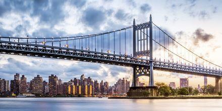 Kennedy Bridge, New York, USA