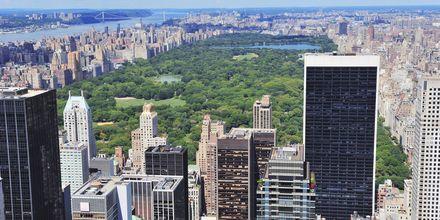 Udsigt over Central Park i New York, USA.