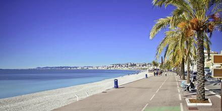 Strandpromenaden Promenade des Anglais, Frankrig.