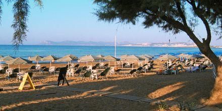 Stranden ved Hotel Ninemia Beach på Kreta, Grækenland.