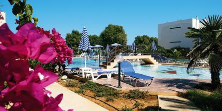 Poolen på Hotel Ninemia Beach på Kreta, Grækenland.