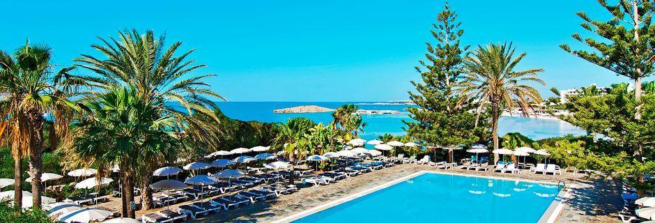 Poolområdet ved hotel Nissi Beach i Ayia Napa, Cypern