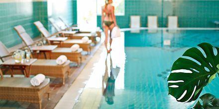 Indendørs pool på hotel Nissi Beach i Ayia Napa, Cypern