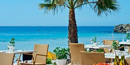Poolbaren på hotel Nissi Beach i Ayia Napa, Cypern