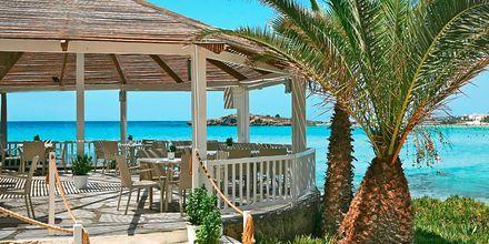 Strandbaren ved hotel Nissi Beach i Ayia Napa, Cypern