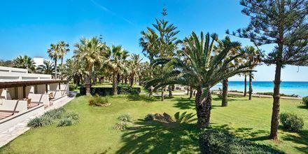 Hotel Nissi Beach i Ayia Napa, Cypern