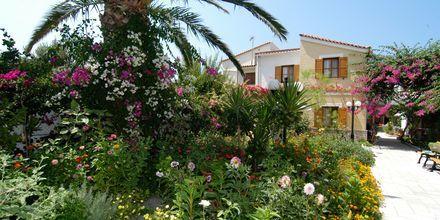 Olympia Village på Samos, Grækenland.