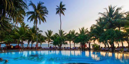 Pool på Oriental Pearl Resort i Phan Thiet, Vietnam
