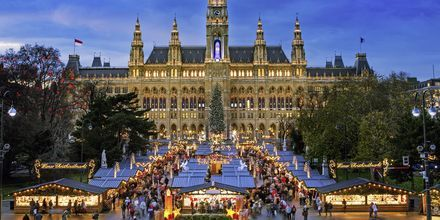 Julemarked i Wien er populært blandt mennesker fra hele verden.