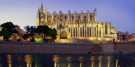 La Seu i Palma de Mallorca om aftenen.