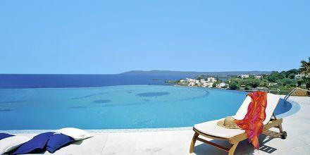 Poolen på hotel Panorama på Kreta, Grækenland.
