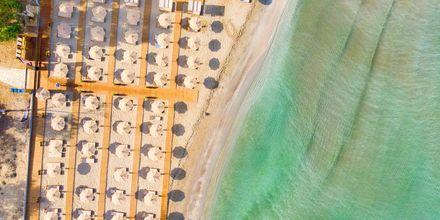 Stranden ved Hotel Paradise Ammoudia i Grækenland.
