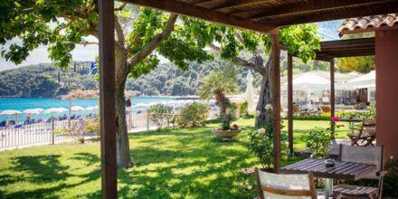 Terrasse til deluxe-værelse på Hotel Parga Beach, Grækenland.