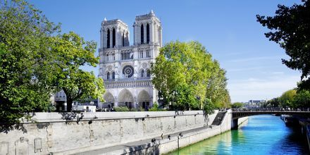 Notre Dame i Paris, Frankrig.