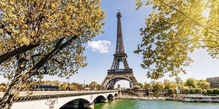 Efterår i Paris.