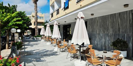 Terrassen på Hotel Paritsa i Kos by, Grækenland.