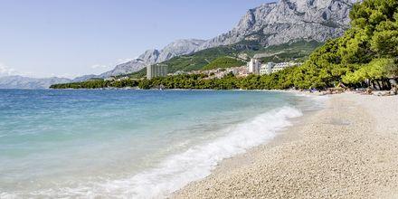 Stranden nedenfor Hotel Park i Makarska, Kroatien.