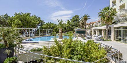 Pool på Hotel Park i Makarska, Kroatien.