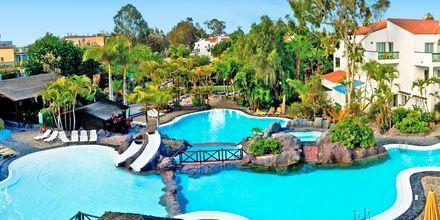 Poolområdet på Hotel Park Club Europe på Tenerife, De Kanariske Øer, Spanien.