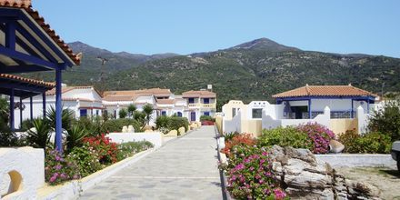 Hotel Pavlis i Votsalakia på Samos i Grækenland.