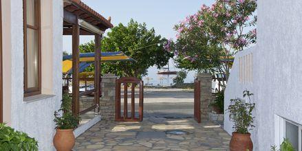 Hotel Pelagos Beach i Votsalakia på Samos, Grækenland,