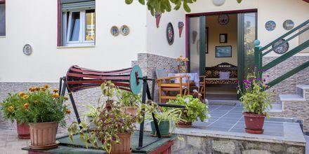 Pension Soula på Skopelos i Grækenland.